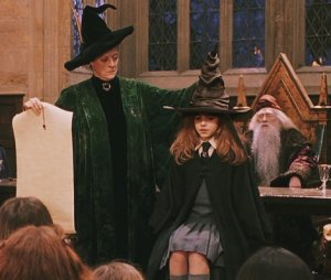 sorting hat 4 hermione
